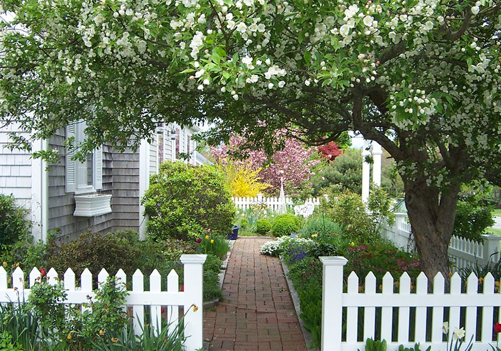 Cape Cod Lawn Maintenance